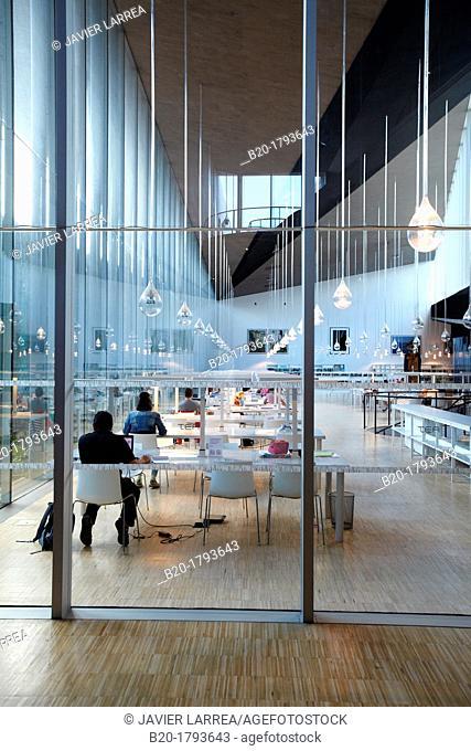 Library, TEA, Tenerife Espacio de las Artes, Tenerife Art Space, Santa Cruz de Tenerife, Tenerife, Canary Island, Spain