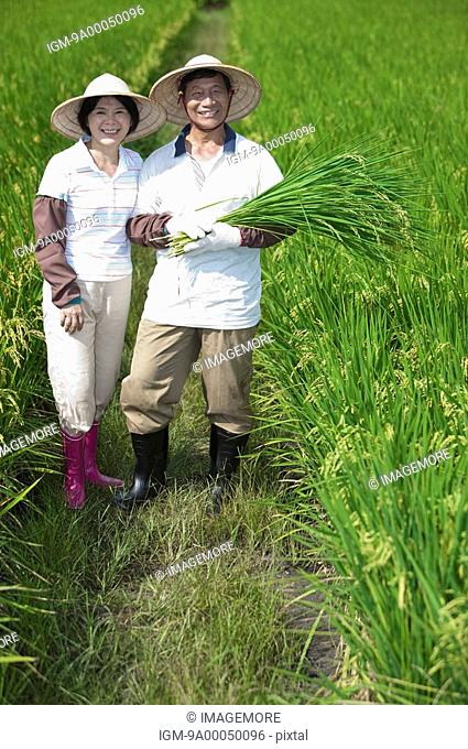 Farmer couple standing in rice field, man holding rice plants