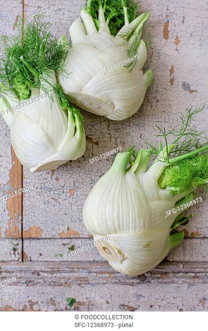 Three fresh fennel bulbs (top view)