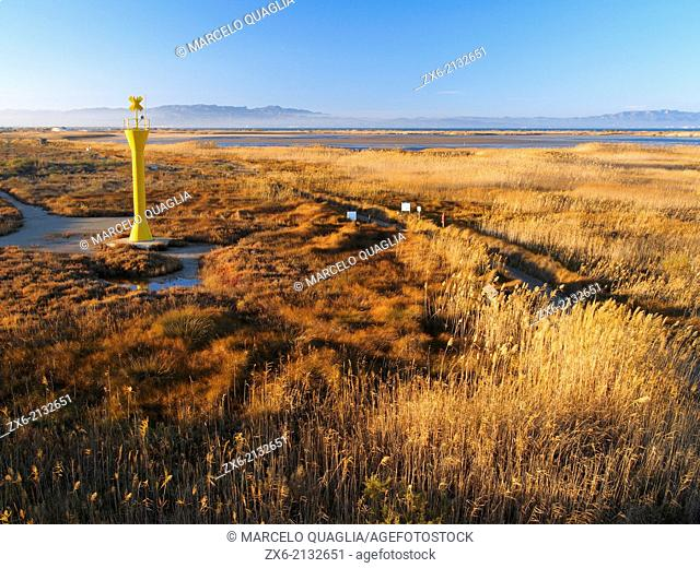 Lighthouse at Garxal coastal lagoon with typical salt marshes and reedbed. Ebro River Delta Natural Park, Tarragona province, Catalonia, Spain