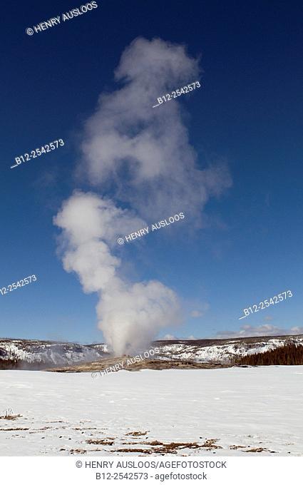 USA - Yellowstone - Steam - Old Faithfull in winter