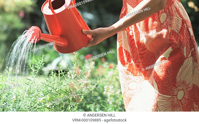 woman watering her plants
