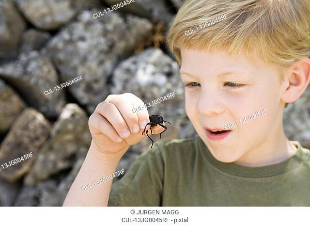 A headshot of a boy with a beetle