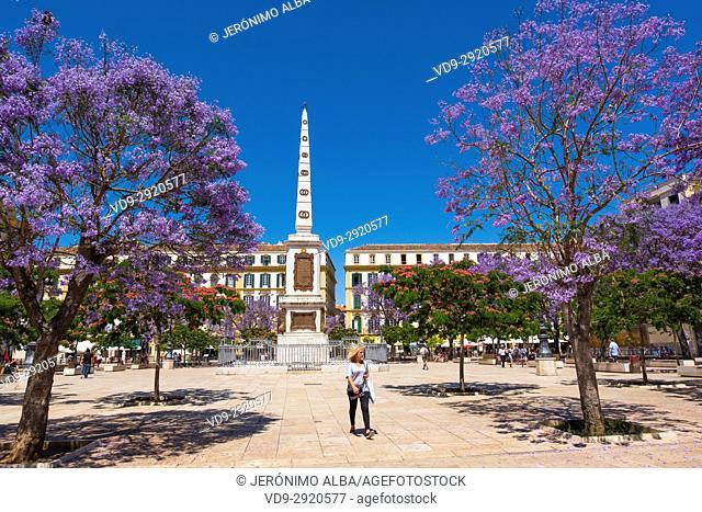 Plaza de la Merced in spring Málaga, Costa del Sol. Andalusia, Southern Spain Europe