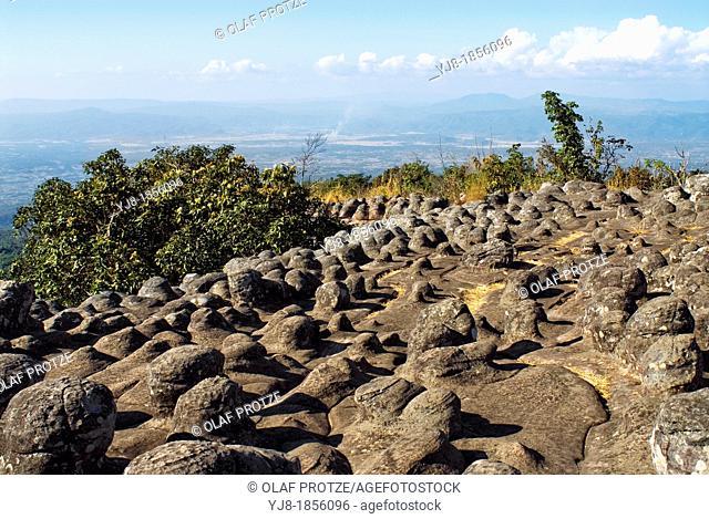 Nodulated rock field at Lan Hin Pum inside Phu Hin Rong Kla National Park near Phitsanulok, Thailand