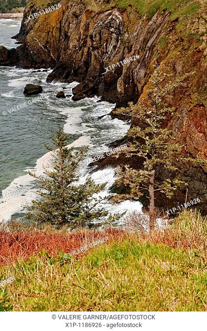 This beautiful seascape is the Pacific Ocean on steep cliffs in Washington State near Cape Disappointment Waves are hitting the rocks at the bottom of the...