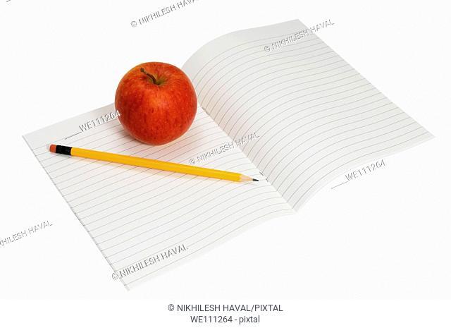Apple pencil notebook