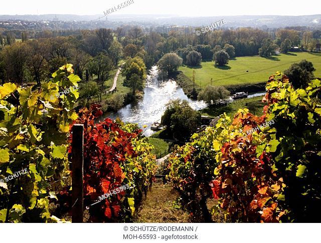 Naumburg, Mündung der Unstrut rechts in die Saale