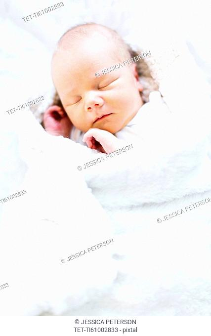 Baby boy (2-5 months) sleeping in white blanket