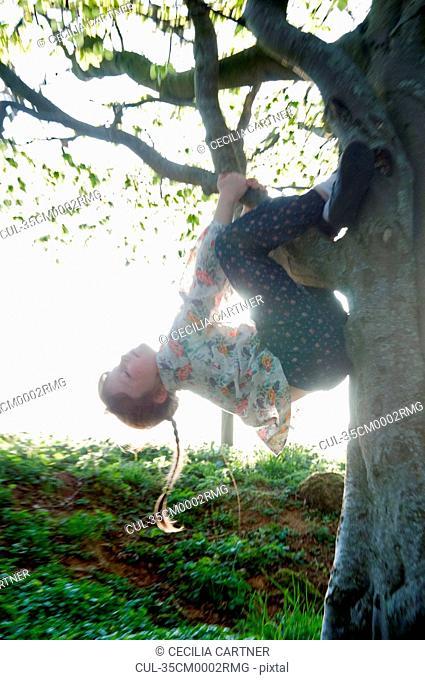 Girl climbing tree in field