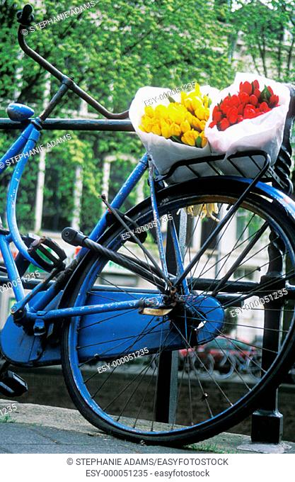Blue bike with tulip on back