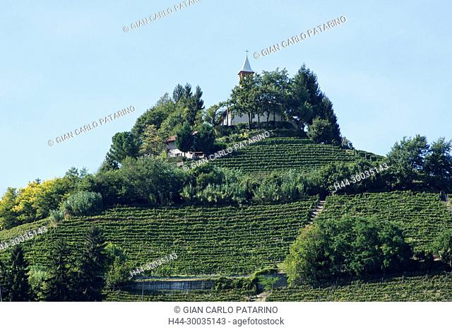 Italy, panorama of vineyards of Piedmont Langhe-Roero and Monferrato on the World Heritage List UNESCO. View of the Moncucco hill Italy, Piedmont, Vineyards