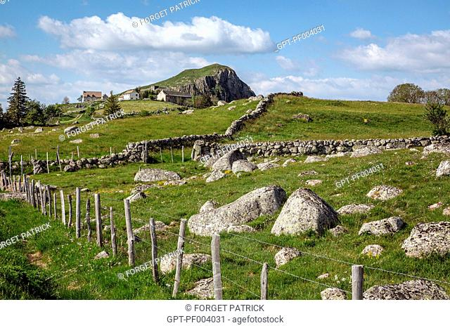 TYPICAL LANDSCAPE OF THE AUBRAC PLATEAU BETWEEN MALBOUZON AND NASBINALS, LOZERE (48), FRANCE