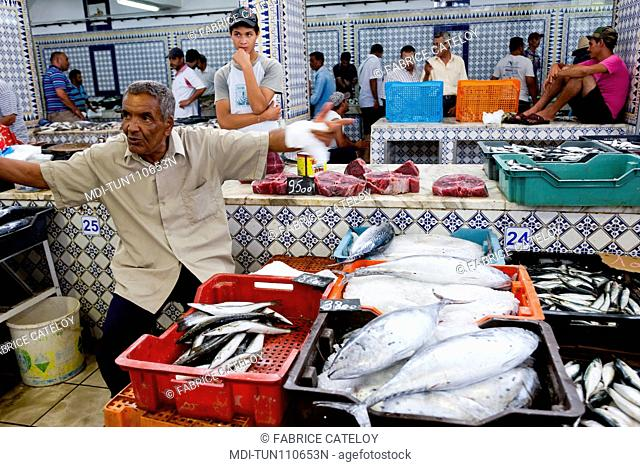 Tunisia - Madhia - Fish market - Man selling fishes