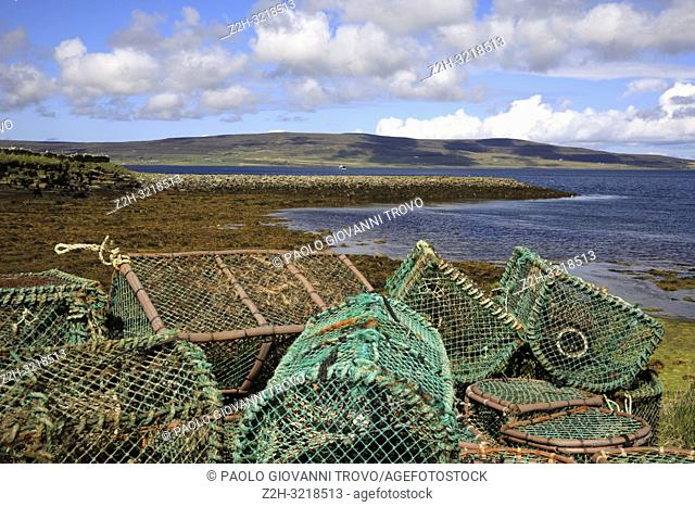 Lobster and crab fishing pots piled in the port, Orkney, Scotland, Highlands, United Kingdom
