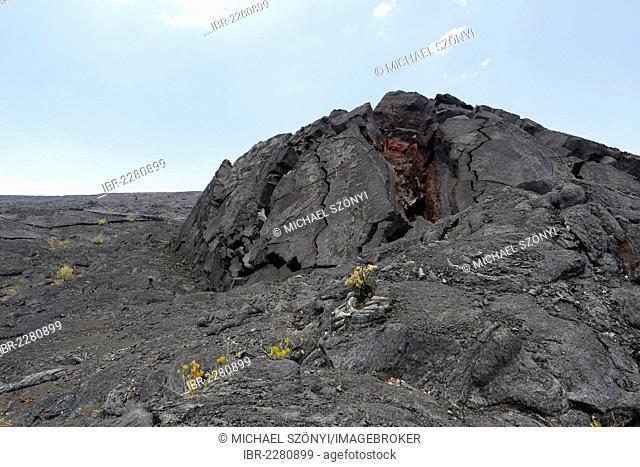 Volcanic hill, also called tumulus, in the Eastern Rift Zone, Kau Desert Trail, Hawaii Volcanoes National Park, Big Island, Hawaii, USA