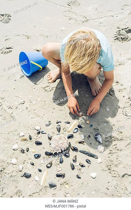 France, Brittany, Finistere, Pointe de la Torche, boy playing with seashells on the beach