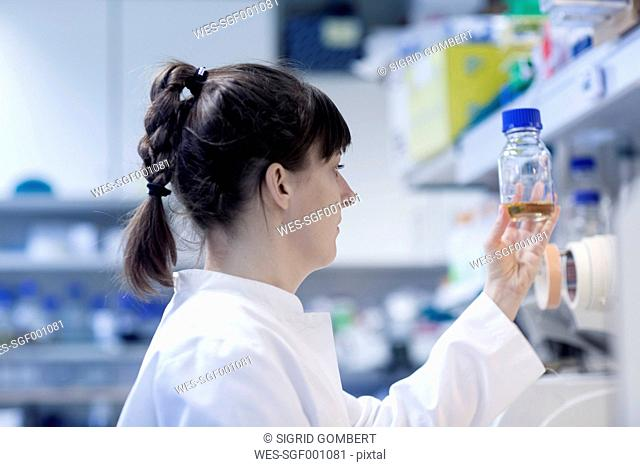 Young female natural scientist working at biological laboratory