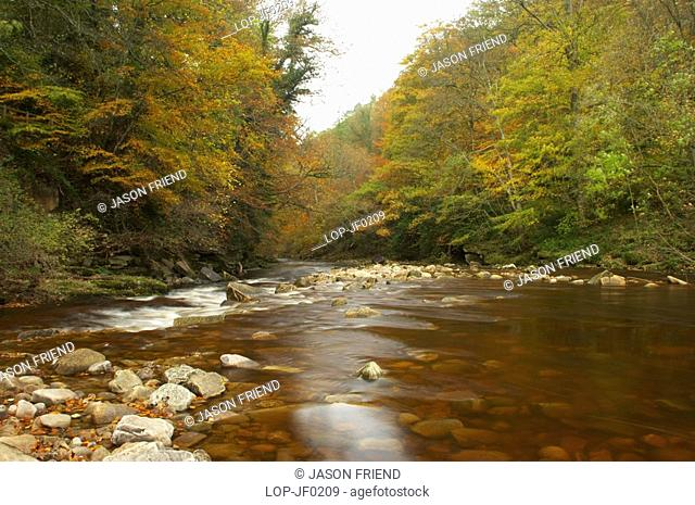 England, Northumberland, Allen Banks, The fast flowing waters of River Allen running through the tree clad Staward Gorge in Autumn