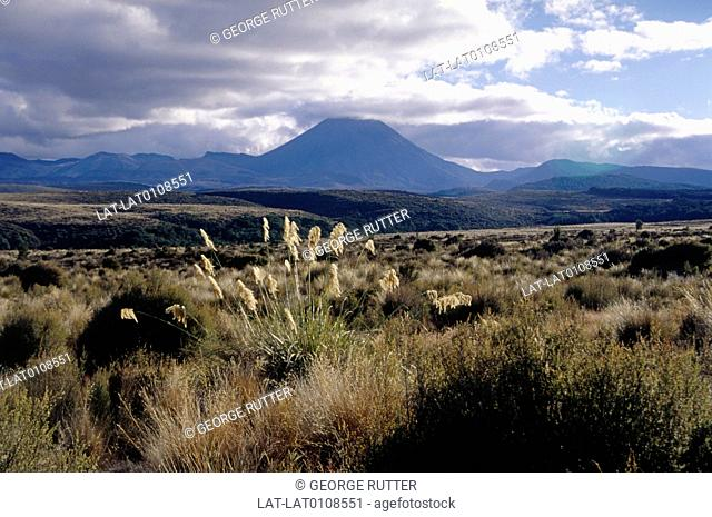 Mount Ruapehu,is an active stratovolcano at the southern end of the Taupo Volcanic Zone. It is one of the world's most active volcanoes