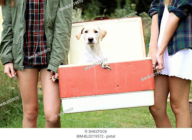 Close up of women carrying dog in vintage cooler
