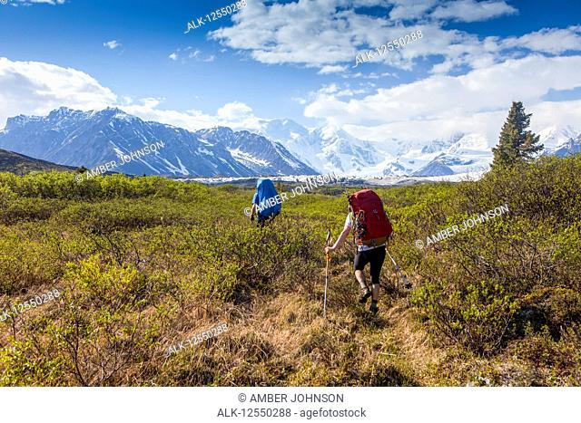 Man and woman backpacking on a sunny, summer day through brush on the Donoho Lakes Loop, with Wrangell Mountains and Kennicott Glacier in the background