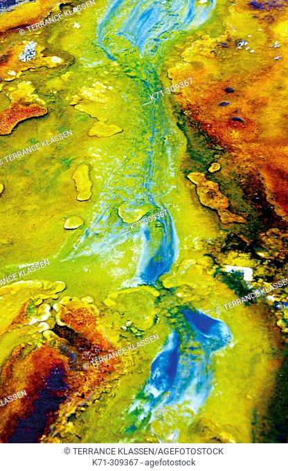 Colorful mineral precipitates in the Black Sand Geyser Basin in Yellowstone National Park. Wyoming, USA