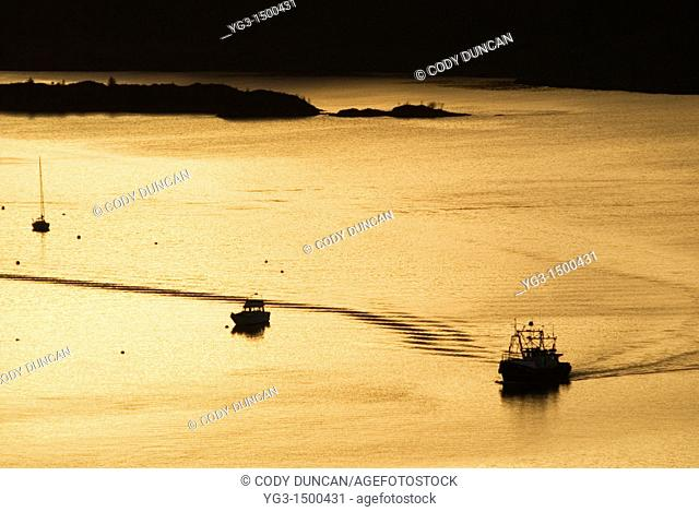 Golden light over Oban harbour, Scotland