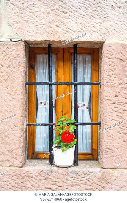 Rustic window and plant pot. Carrejo, Cantabria, Spain