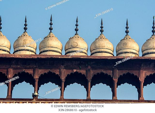 Small domes line the top of the crenellated wall at the main entrance of the Taj Mahal, located in Agra, India