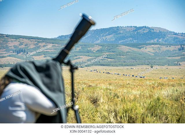 Female photographer readies her camera with a line of cars await entry into Grand Tetons National Park in the background, Teton County, Wyoming. USA
