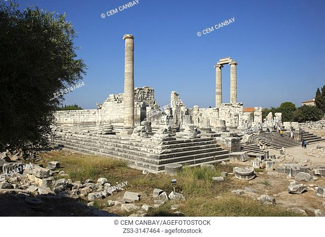View to the Temple of Apollo at the Archeological area of Didim, Didyma, Aydin Province, Turkey, Europe