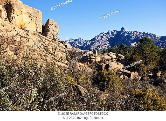 Pedriza Anterior from Higuera cliffs. Regional Park of the Cuenca Alta del Manzanares. Manzanares el Real. Madrid. Spain. Europe