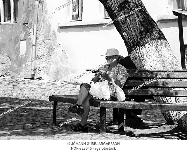 An elderly woman sitting on a bench in the shadow of a tree