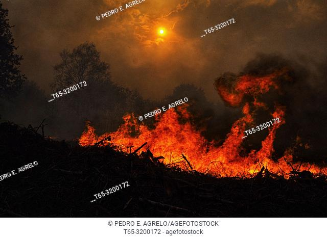 Forest fire in Constante, Lugo province, Galicia, Spain. Date: 15-10-2017