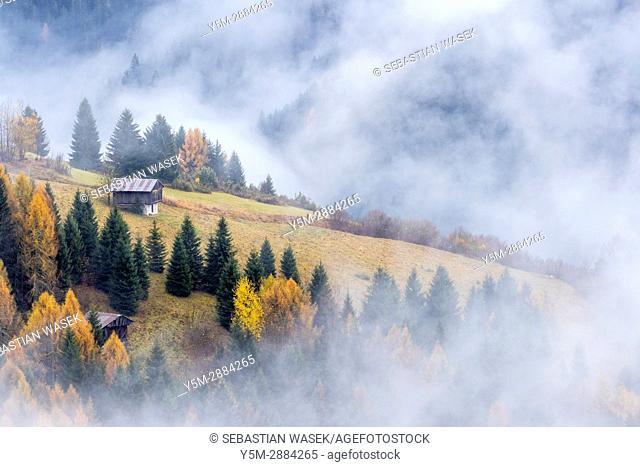 Misty valley seen from Costalta, Province of Belluno, region of Veneto, Italy, Europe