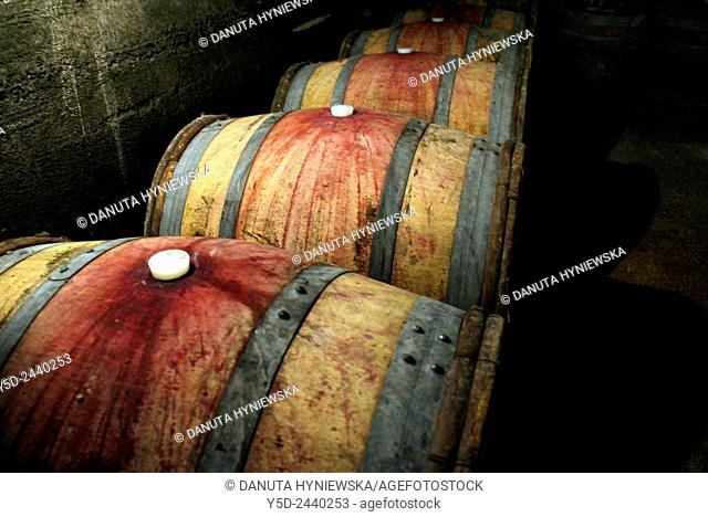 Wine barrels in a cellar, Chenas - a small town and also name of appellation of red wines in Northern Beaujolais, Beaujolais, region, Rhône department
