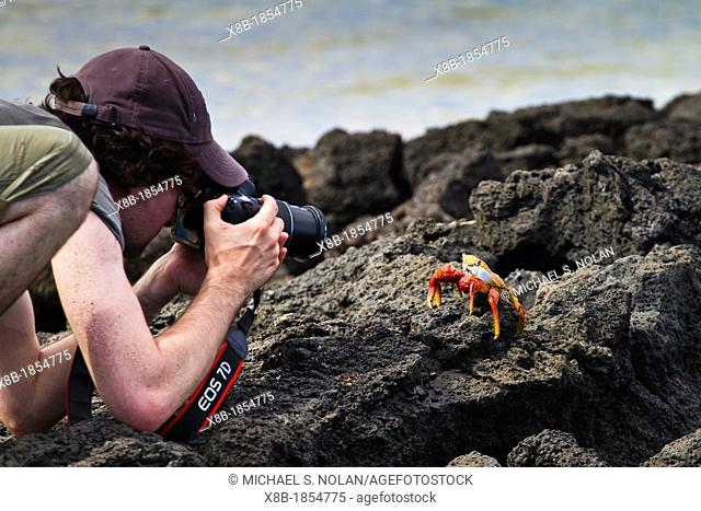 Guest Marco Chimienti from the Lindblad Expedition ship National Geographic Endeavour photographing a crab on Floreana Island in the Galapagos Islands