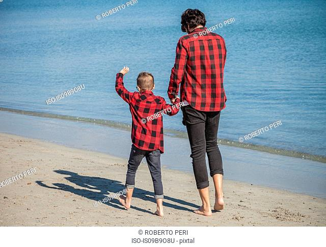 Father and son walking along beach, holding hands, rear view