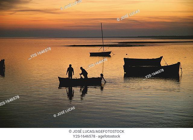 Fishermen in boat, Cadiz bay Natural Park, Puerto Real, Cadiz-province, Spain