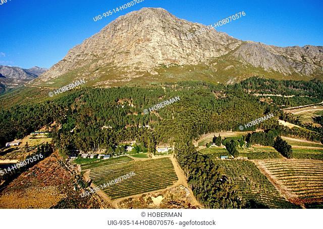 Cape Wine Route, Western Cape