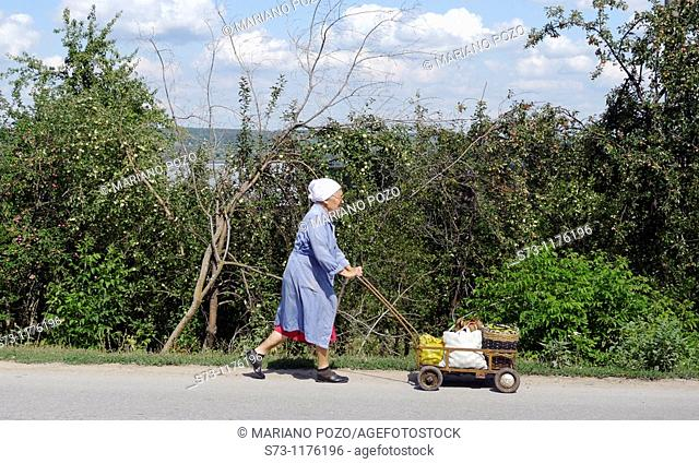 Old woman carrying vegetables on a cart, Togliatti, Russian Federation, Russia
