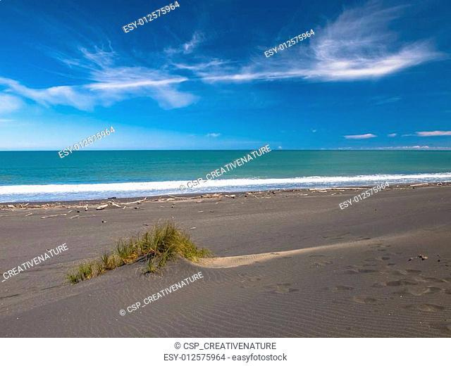 Dune in Black Sand Beach near New Plymouth, New Zealand