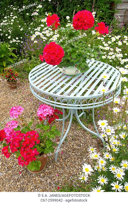 Garden still life with flowers