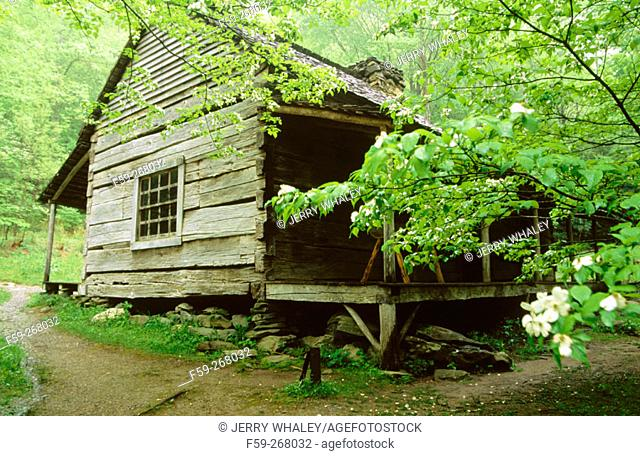 Bud ogle cabin. Great Smoky Mountains National Park. Tennessee. USA