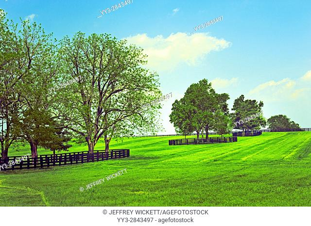 Beautiful tree landsdcape. Scenic highway in Franklin County, Kentucky, USA