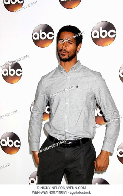 Disney/ABC TV TCA Winter 2017 Party at Langham Hotel - Arrivals Featuring: Alfred Enoch Where: Pasadena, California, United States When: 10 Jan 2017 Credit:...