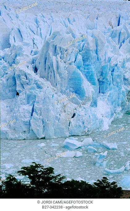 Perito Moreno glacier. Los Glaciares National Park. Los Andes mountain range. Santa Cruz province. Patagonia. Argentina