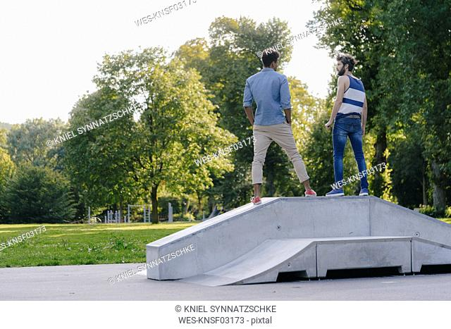 Two friends standing in a skatepark