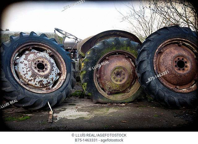 Old tractor wheels